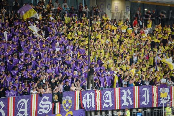 MariborCelje_00a_Viole_200809.jpg