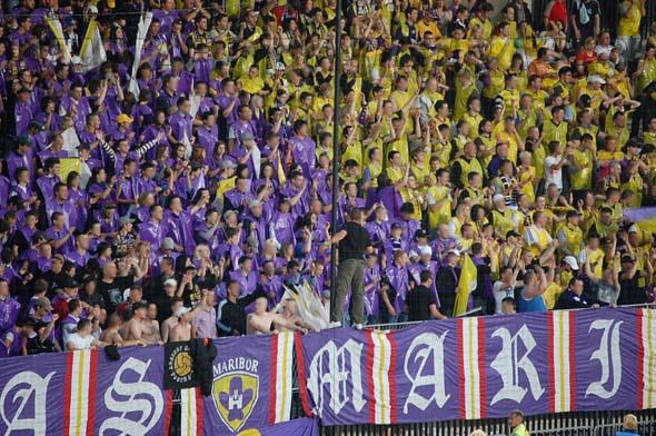 MariborCelje_00b_Viole_200809.jpg