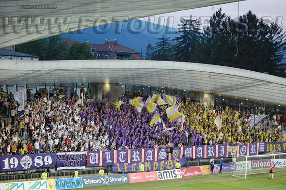MariborCelje_02_Viole_200809.jpg