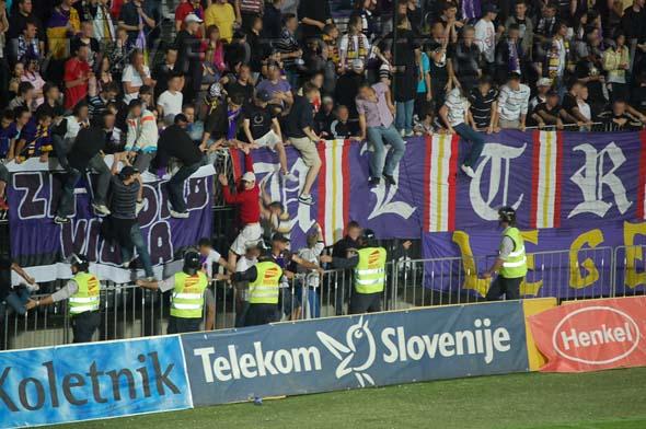 MariborCelje_57a_Viole_200809.jpg