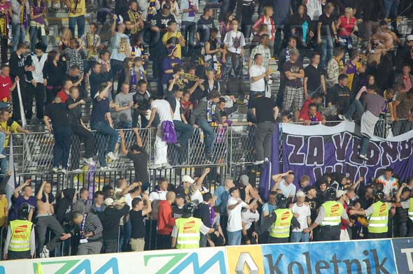 MariborCelje_59a_Viole_200809.jpg