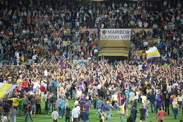 MariborCelje_80_Viole_200809.jpg