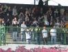 MuraPohorje_200506_BlackGringos_8.jpg