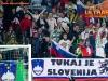 SlovenijaFerskiotoki_EKV2012_11.jpg